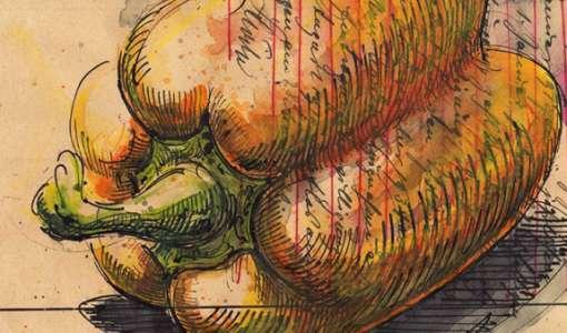 Intensivkurs: Stillleben zeichnen