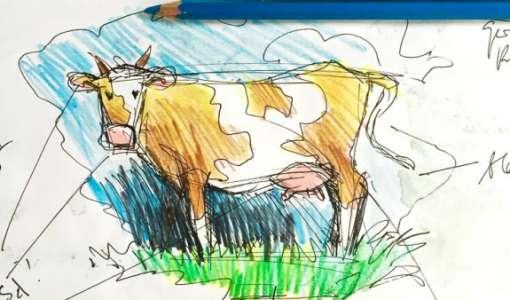 Zeichnung & Skizze